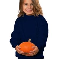 Custom Embroidered Children's Sweatshirts & Fleece